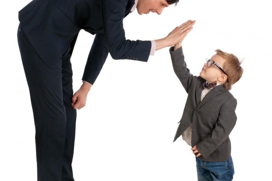 Family mediators